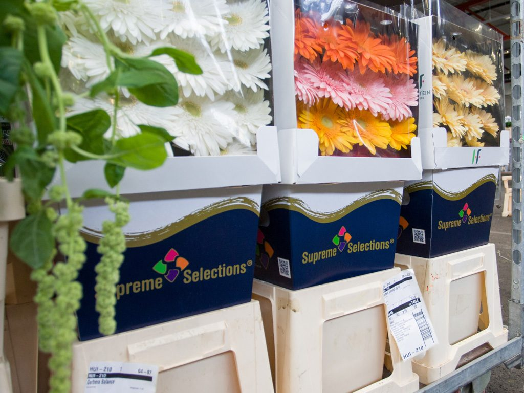 Supreme Selections high quality flowers
