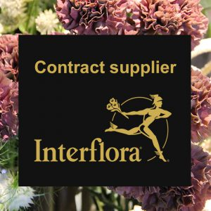 Instagram post Interflora leverancier ENGELS